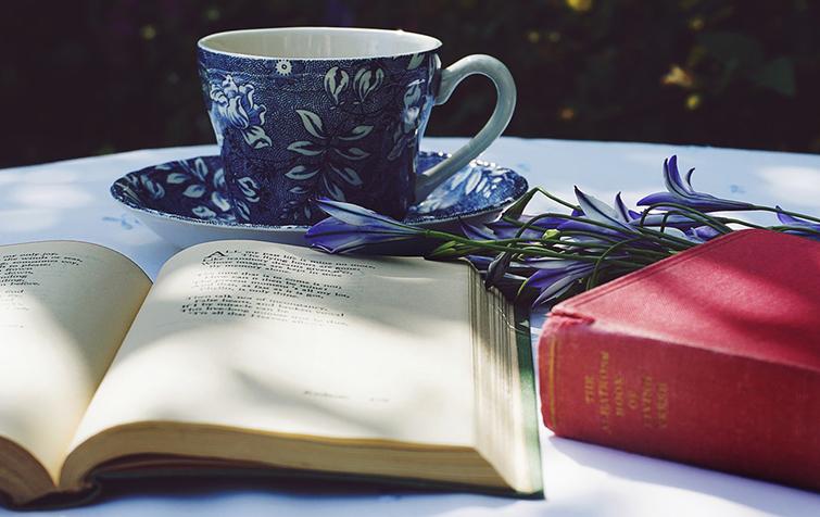 Bild posten Die 5 besten deutschen Bücher für deine Wunschliste Franz Kafkas Metamorphosis - Die 5 besten deutschen Bücher für deine Wunschliste